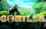 Онлайн аппарат Gorilla