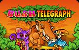 Онлайн слот Bush Telegraph
