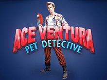 Игровой слот Ace Ventura